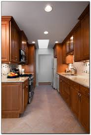 Kitchen Remodeling Ideas On A Budget by Searching For Kitchen Redesign Ideas Home And Cabinet Reviews