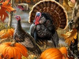 wishing beautiful colors seasons animals thanksgiving lovely