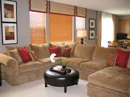 Light Brown Couch Decorating Ideas by Living Room Astonishing Brown Living Room Brown And Blue Living
