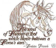 Horse Bridle Decorations Horse Bridle Decorations Horse Idea Pinterest Horses Bridle