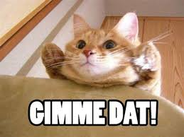 Dat Ass Cat Meme - th id oip wf3fu5uze jroqop jlhnqhafj