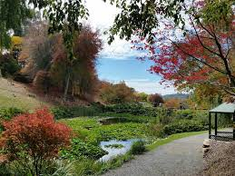 Geelong Botanic Gardens by Drone Captures Stunning Footage Of Mount Lofty Botanic Gardens In