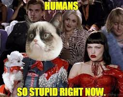 Humans Meme - 70 memes that are so stupid