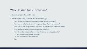 natural selection and the origin of new species ppt download