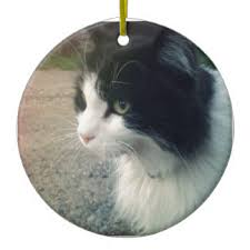tuxedo cat ornaments keepsake ornaments zazzle