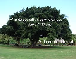 Tree Puns Yeah Tree Puns