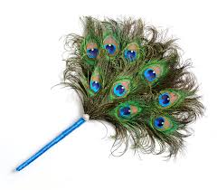 peacock feather fan peacock feather fan stock image image of background 30125615