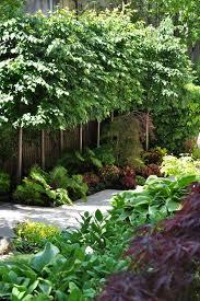 463 best french inspired garden ideas images on pinterest garden