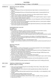 sle resume templates accountants compilation report income revenue analyst resume sles velvet jobs