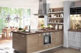 coloris cuisine cuisine modèle 1121 xl coloris alu idée de décoration cuisines