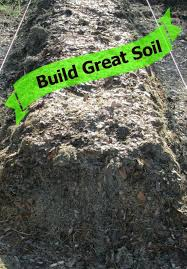 Backyard Soil 824 Best Soil U0026 Amendments Images On Pinterest Garden Soil