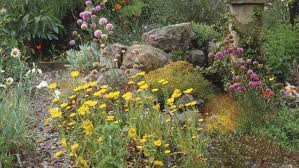 Rocks In Gardens 6 Best Rock Garden Ideas Yard Landscaping With Rocks