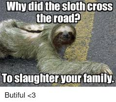 The Sloth Meme - why did the sloth cross the road to slaughter your family butiful