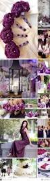 deep purple color best 25 dark purple wedding ideas on pinterest purple wedding