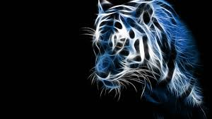 imagenes abstractas hd de animales desktop d wallpaper hd free desktop d wallpapers hd full