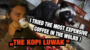 Coffee Poop Meme - vietnam 3 basically i drink weasel poop the kopi luwak