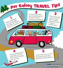 pet travel safety tips anson veterinary hospital