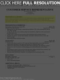 profile resume examples for customer service profile summary for sales resume free resume example and writing qualifications summary career objective and professional profile