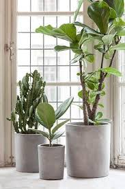 Indoor Plant Vases 3 Things Best To Create Diy Plant Stands Concrete Pots Diy