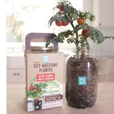 Indoor Garden Containers - 170 best container gardens images on pinterest container garden