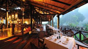 places to stay in borneo natural world safaris