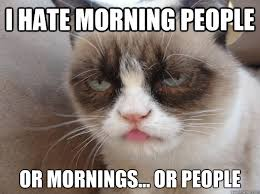 I Hate People Meme - i hate morning people or mornings or people i hate morning