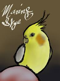 cartoon cockatiel liked drawings by xareumnarix paigeeworld