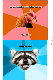 Anti Joke Chicken Meme - not sure if anti joke chicken or lame pun coon by bojan miletic
