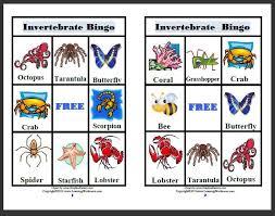 free printable worksheets vertebrates invertebrates learning ideas grades k 8 invertebrates video and resources