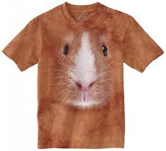 gifts for guinea pig guinea piggles