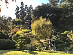Huntington Botanical Garden by Tea Gardens And Art At The Huntington In Pasadena Thatgirlcarmel