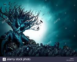 halloween theme background halloween creepy background haunted ghost tree at night as an old