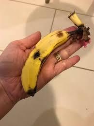 tiny banana heidi c onehungryhen twitter