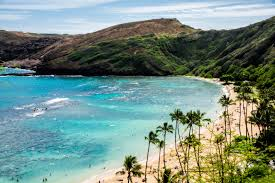 hawai u0027i u0027s hanauma bay is named the best beach in america by dr