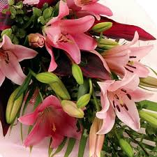 deliver flowers today flowers to tocumwal flower delivery today country nsw 2714 nsw