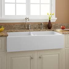 Risinger DoubleBowl Fireclay Farmhouse Sink White Kitchen - Farmer kitchen sink