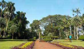 Colorado Botanical Gardens File Teijsmann Garden At Bogor Botanical Garden Indonesia Jpg