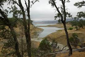 two die after small plane crashes near lake berryessa in napa