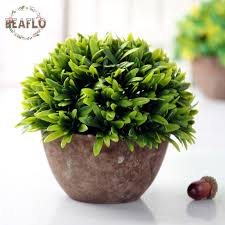 Home Decor Plants Living Room by Home Decorating Plants Simple Home Decorating Plants With Home