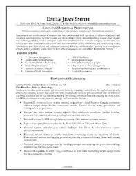 Sample Sales Executive Resume by Another Executive Sample Resume Executive Resume Resumewriters