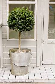 Lollipop Topiary Tree Easy Idea For Adding Plants To Your Summer Porch A Galvanized