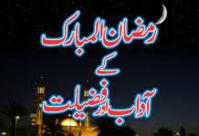 sahifa theme rar sahifa wordpress theme free download