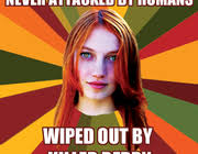 Hunger Game Memes - 20 hilarious hunger games memes taking over the web