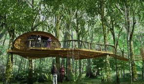 31 awesome tree houses win gallery ebaum u0027s world