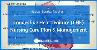 high resolution nursing home care plans 10 home care plan congestive heart failure chf nursing care plan management