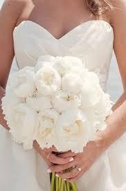 common wedding flowers popular flowers for wedding bouquets wedding corners