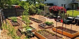 Vegetable Garden Layout Guide Garden Layout Software Vegetable Garden Layout Template Vegetable