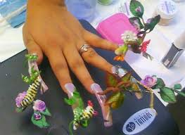 natural history of butterflies nail art gallery