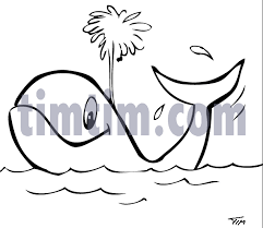 free drawing of 1 whale bw from the category fish timtim com