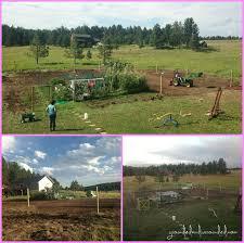 large garden ideas home design